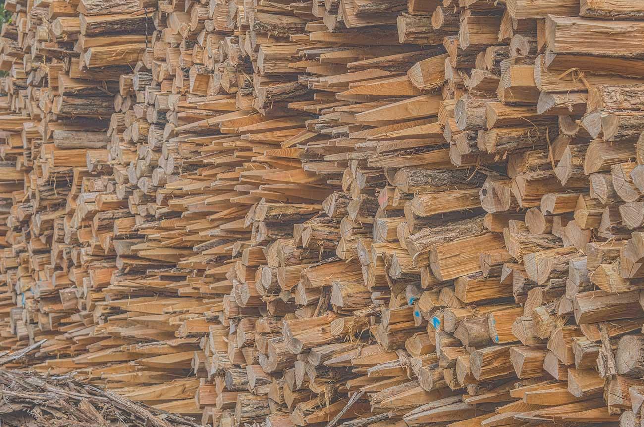 Poteaux en Accacia pour cloture vachére de l'entreprise Cloture Bois Boscher à MOYAUX 14590 Normandie France